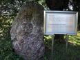 小石川植物園⑭