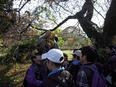 小石川植物園⑯
